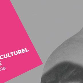 Programme culturel et artistique / février 2018 – juin 2018