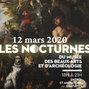 Nocturne au musée des beaux-arts et d'archéologie